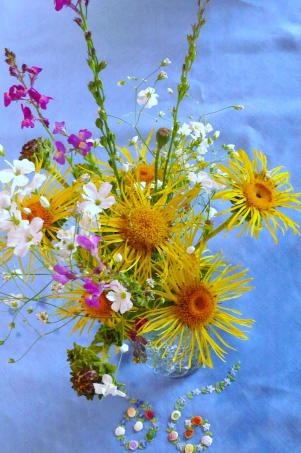 Watch the Flowers Grow Vintage Warm Colours 2